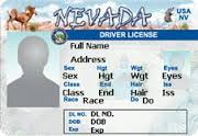 permis conduire nevada planete vegas